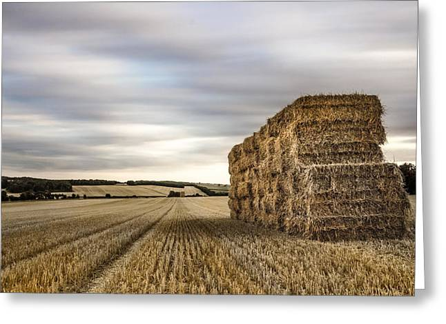 Hay Bales Photographs Greeting Cards - Freshly Cropped Greeting Card by Ian Hufton