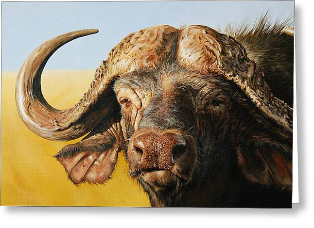 African Buffalo Greeting Card by Mario Pichler