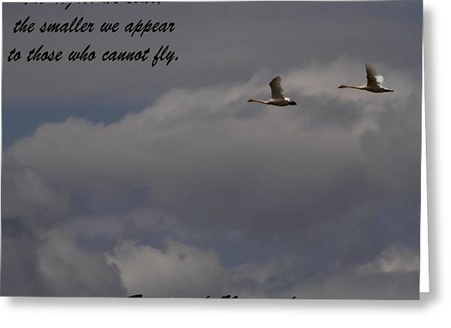 Flying Swan Greeting Cards - Friedrich Nietzsche Greeting Card by Dan Sproul