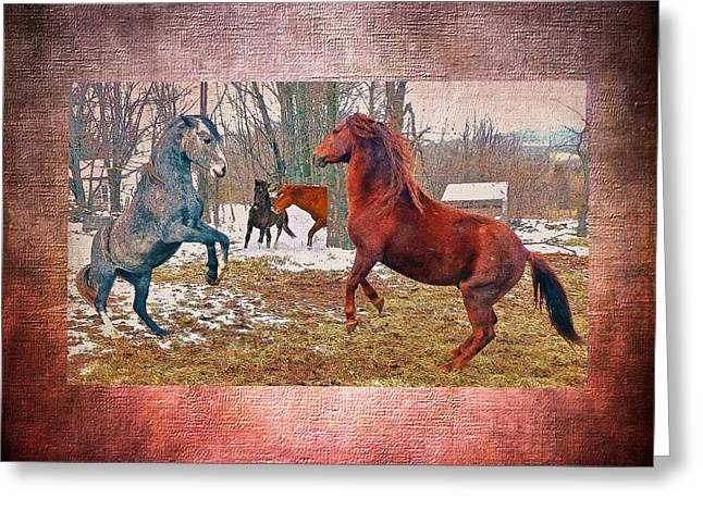 Paso Fino Stallion Greeting Cards - Friend Or Foe Greeting Card by Patricia Keller