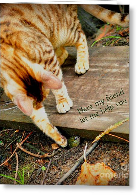Friend Or Foe Greeting Cards - Friend or Foe Greeting Card by Patricia Morales