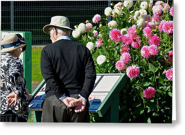 Talking Roses Greeting Cards - Friends at the Flower Garden Greeting Card by Rachel Cash