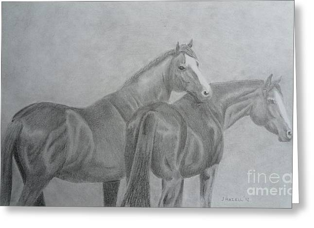 Quarter Horses Greeting Cards - Friends Greeting Card by Jane Hazell