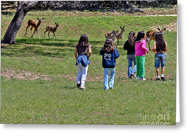 Friends Making Friends Greeting Card by Bob and Nadine Johnston