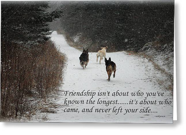 Recently Sold -  - Best Friend Greeting Cards - Friendship Greeting Card by Sue Long