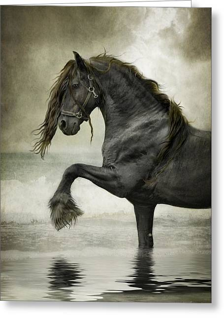 Play Digital Greeting Cards - Friesian Surf  Greeting Card by Fran J Scott