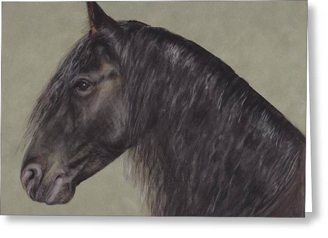 Friesian Wisdom Greeting Card by Loreen Pantaleone