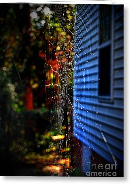 Flying Spider Greeting Cards - Fright Night Greeting Card by Skip Willits