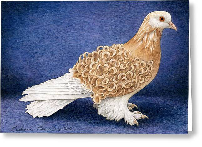 Pigeons Greeting Cards - Frillback Pigeon Greeting Card by Katherine Plumer