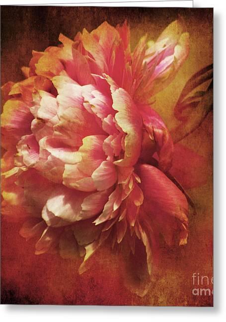 Frilled Splendor Greeting Card by Wobblymol Davis