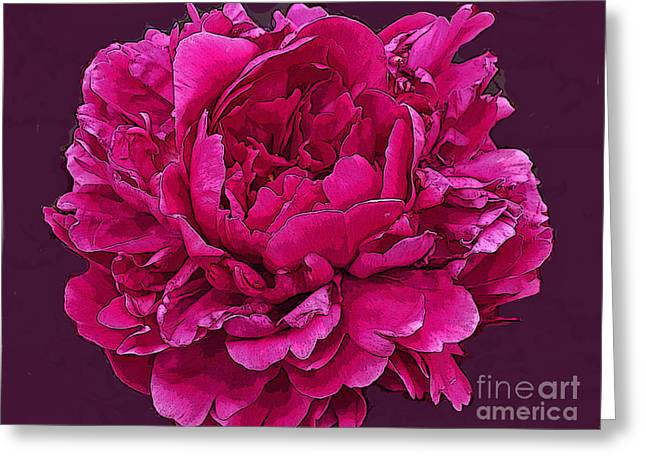 Fushia Greeting Cards - Frilly Lush Bright Pink Peony Greeting Card by Maureen Tillman