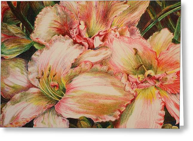 Day Lilly Greeting Cards - Frilly Pinks Greeting Card by Barbara Ebeling