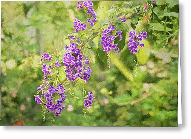 Dewdrops Greeting Cards - Frilly Purples Greeting Card by Kim Hojnacki