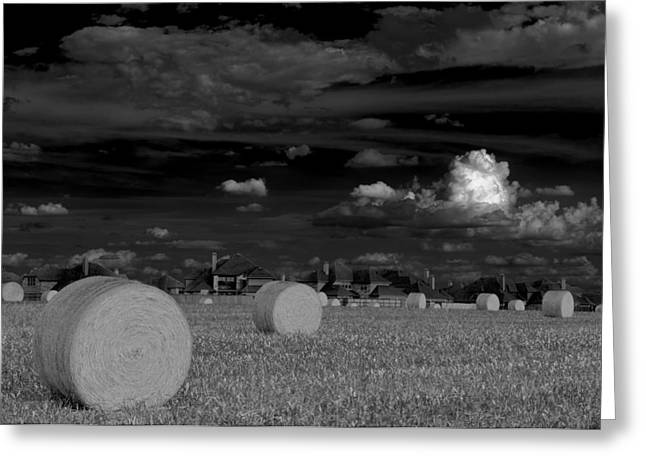 Hay Bales Photographs Greeting Cards - Frisco Dream Greeting Card by Darryl Dalton