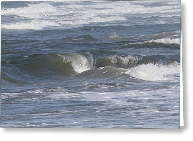 Ocean Art. Beach Decor Greeting Cards - Frisco Waves Greeting Card by Cathy Lindsey