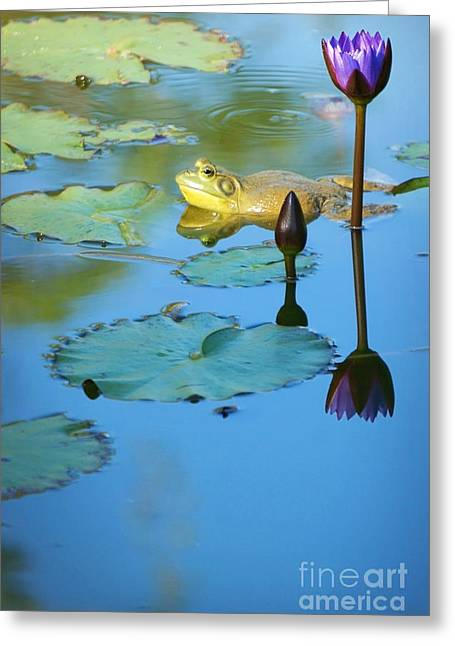 Frog And Lily Greeting Card by Ellen Cotton