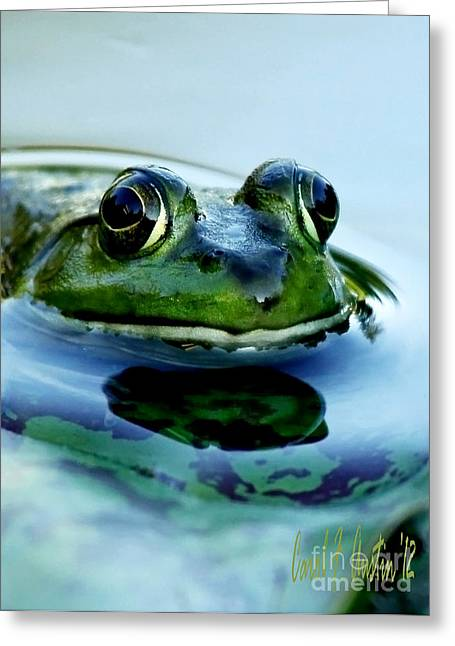 Clever Greeting Cards - I Only Have Eyes For You Greeting Card by Carol F Austin