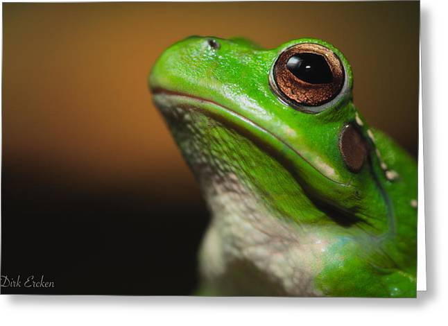 Tree Frog Photographs Greeting Cards - Frog Portrait Greeting Card by Dirk Ercken