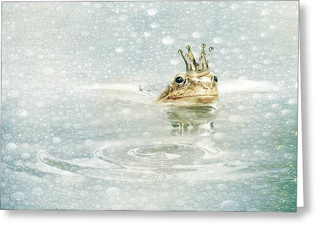 Amphibian Mixed Media Greeting Cards - Frog prince in the rain Greeting Card by Heike Hultsch