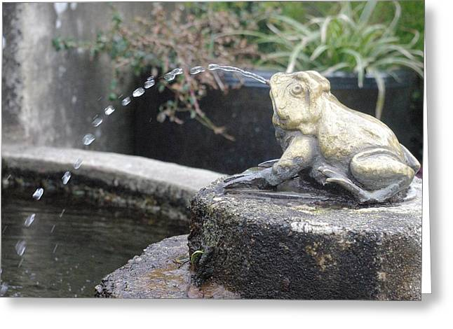 Garden Statuary Greeting Cards - Frog Prince Greeting Card by Marilyn Wilson