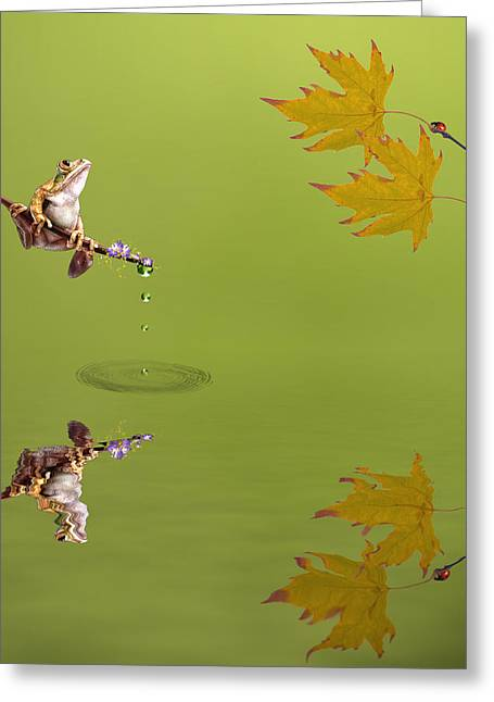Amphibian Mixed Media Greeting Cards - Frog Greeting Card by Sharon Lisa Clarke