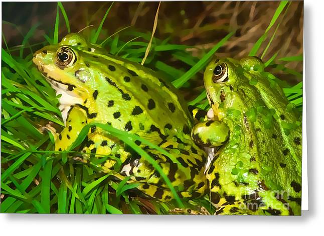 Frogs Photographs Greeting Cards - Frogs Decor Greeting Card by Lutz Baar