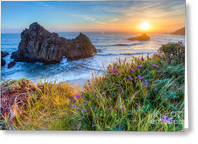 Pfeiffer Beach Greeting Cards - From Above Greeting Card by Greg Clure