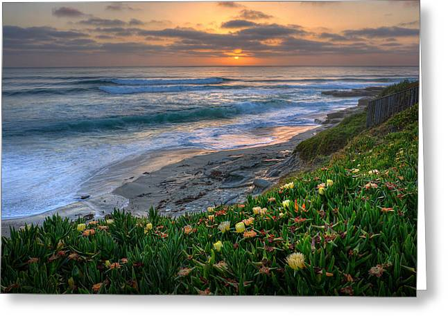 La Jolla Art Greeting Cards - From Above Greeting Card by Peter Tellone