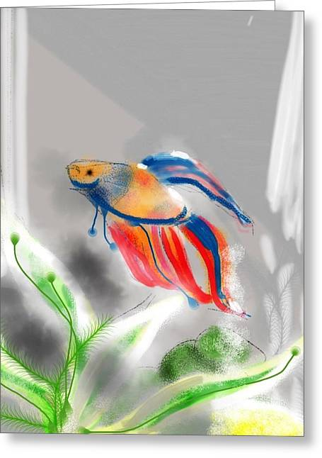 Betta Greeting Cards - From Blue to Red Greeting Card by Lois Ivancin Tavaf