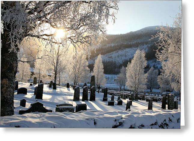 Sweden Greeting Cards - From my cold dead hands Greeting Card by Max Josefsson