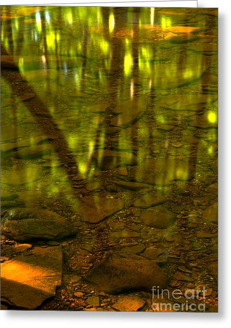 Hells Run Creek Greeting Cards - From River Rocks To Forest Reflections Greeting Card by Adam Jewell