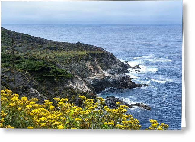 Big Sur California Greeting Cards - From the Cliffs Above Greeting Card by Anthony Citro