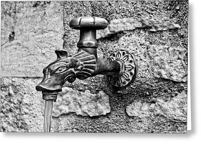 Faucet Greeting Cards - From the dragons mouth Greeting Card by Nomad Art And  Design