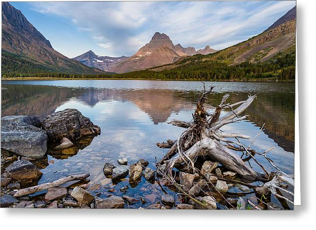 Reflection In Water Greeting Cards - From the Shoreline of Swiftcurrent Lake Greeting Card by Greg Nyquist