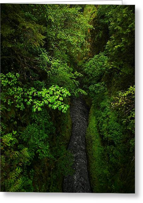 Eagle Creek Greeting Cards - From The Tall Bridge On Eagle Creek Trail Greeting Card by Jeff  Swan