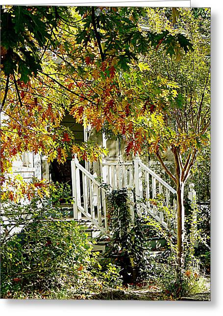 Colusa Greeting Cards - Front Porch Color Greeting Card by Pamela Patch