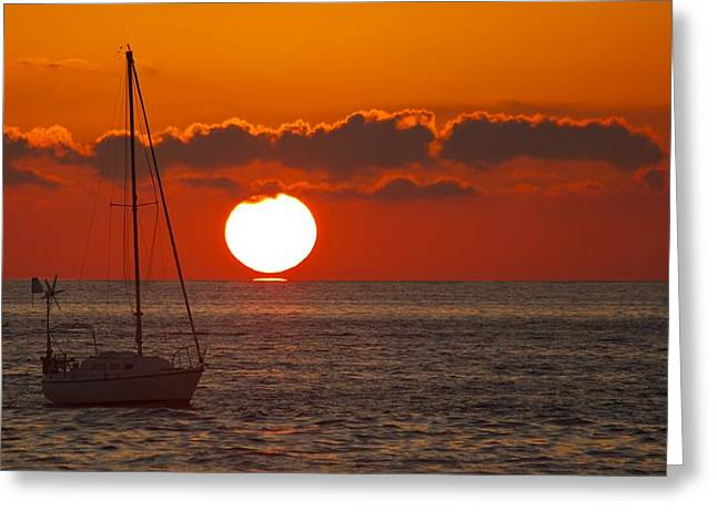 Recently Sold -  - Ocean Vista Greeting Cards - Front Row Seat Greeting Card by Allan Morrison