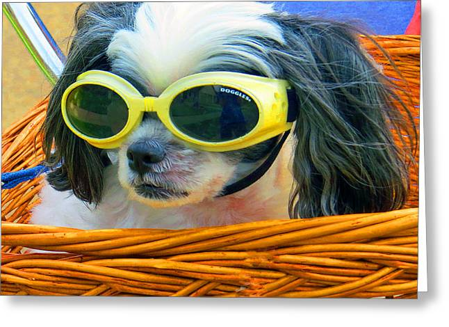Puppy Digital Art Greeting Cards - Front Seat Driver - Puppy Mania Greeting Card by Ella Kaye Dickey