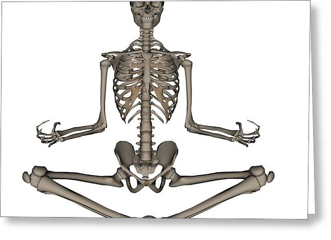 Front View Of Human Skeleton Meditating Greeting Card by Elena Duvernay