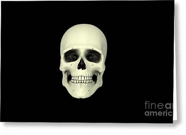 Front View Of Human Skull Greeting Card by Stocktrek Images