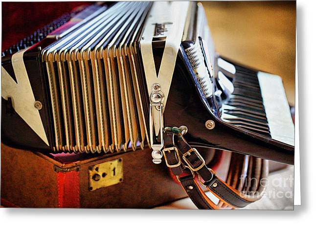 Straps Greeting Cards - Frontalini Accordian 2 Greeting Card by Cheryl Young