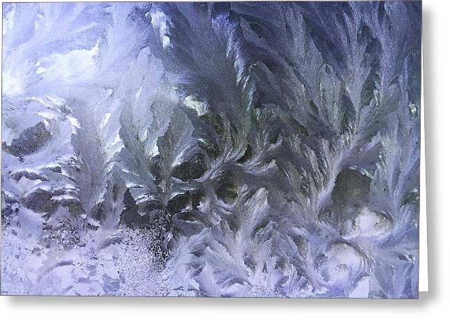 Frost Photographs Greeting Cards - Frost #2 Greeting Card by Jeff Klingler