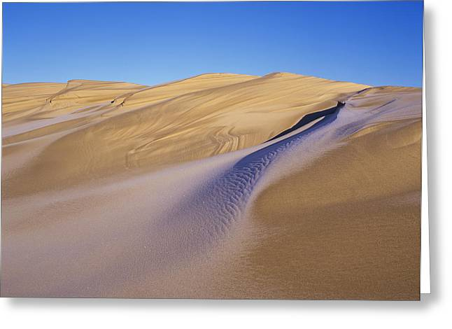 Frost Accents The Sand Dunes In Oregon Greeting Card by Robert L. Potts