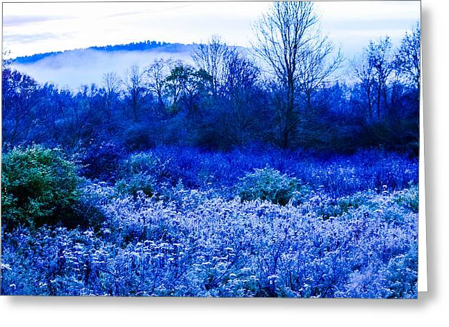 Ithaca Greeting Cards - Frost and Mist Ithaca NY Greeting Card by Libby  Lord