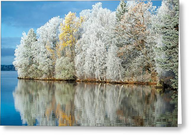 Lakescape Greeting Cards - Frost and Reflections Greeting Card by Ari Salmela