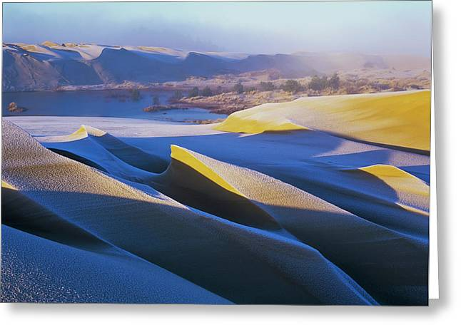 Frost And Sunlight Decorate The Sand Greeting Card by Robert L. Potts