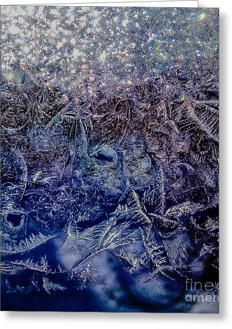 Frost Greeting Card by Jill Hyland