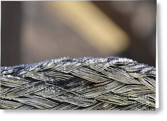 Frost On Metal 1 Greeting Card by Debbie Portwood