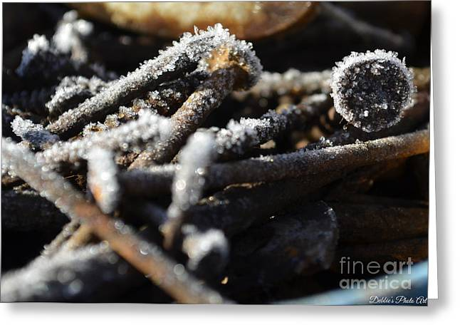 Frost On Metal 2 Greeting Card by Debbie Portwood