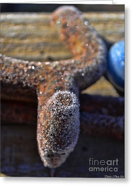 Frost On Metal 4 Greeting Card by Debbie Portwood